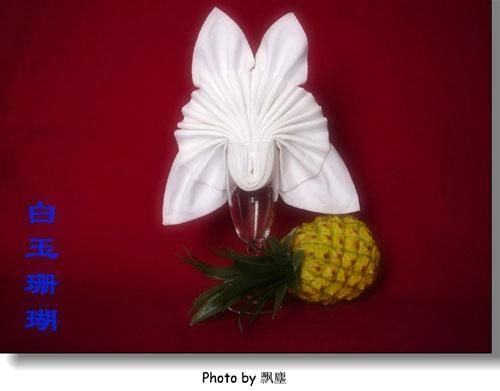餐巾折花艺术欣赏