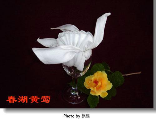 餐巾折花 餐巾折花的种类