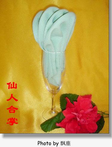 餐巾折花艺术欣赏(二)_餐饮服务技能_职业餐饮网;; 口布折花大全